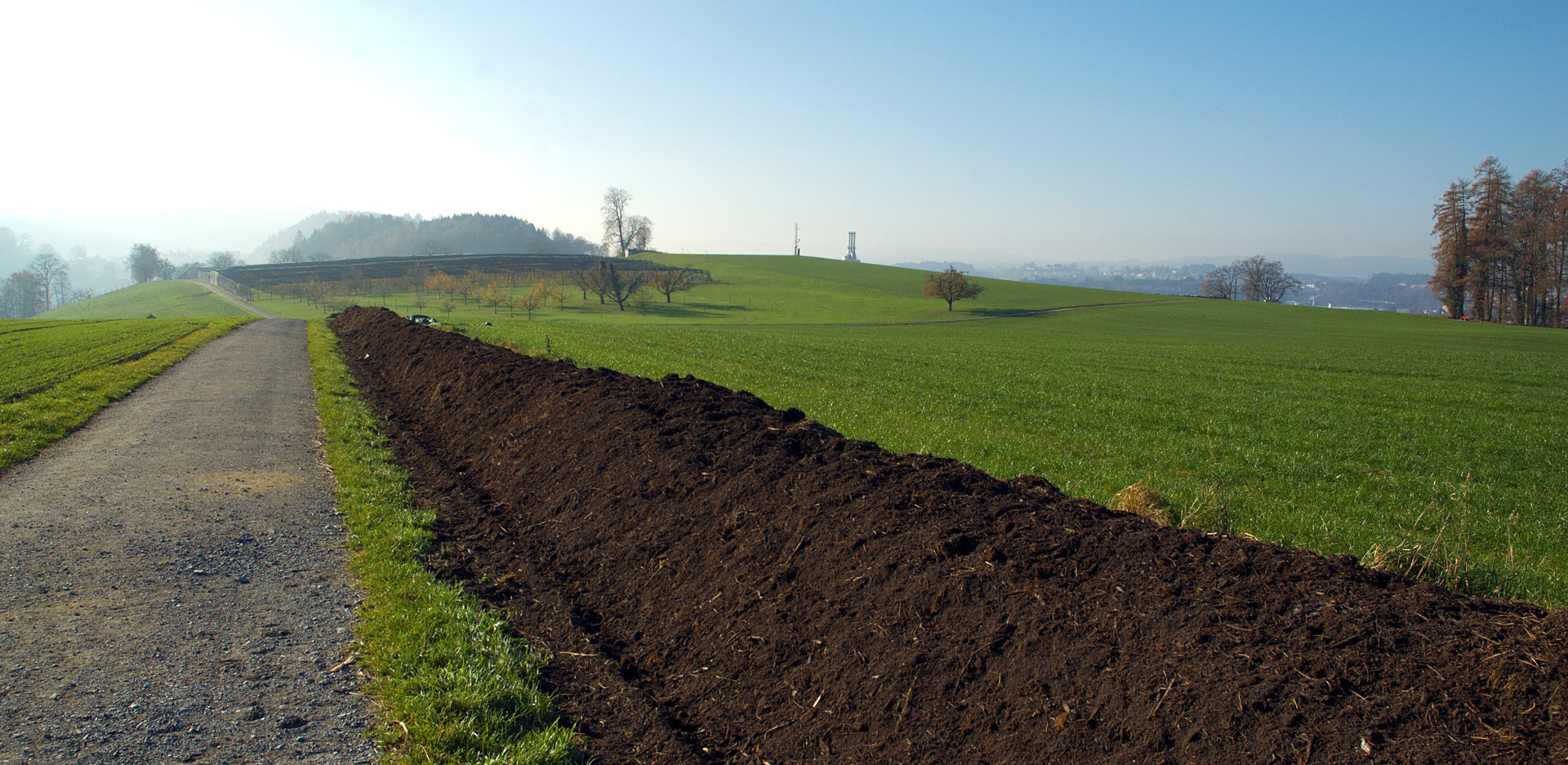 Rebuild Healthy Soil