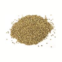 hemp seed (1).png