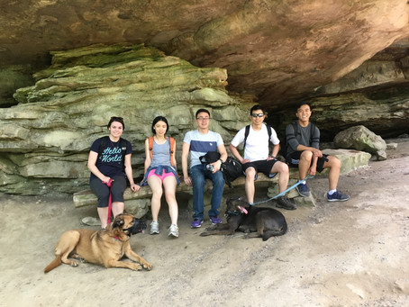 Lynn Lab Takes a Hike