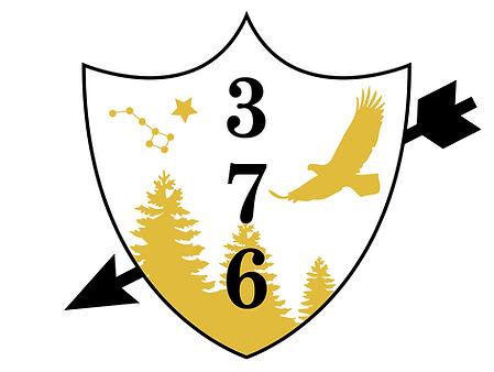 troop 376 logo.jpg