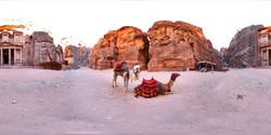 20a_Treasury _Building_Camels