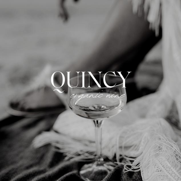 Quincy-3.png