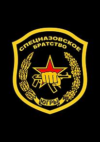Спецназовское братство Шеврон 3.0 Толсты