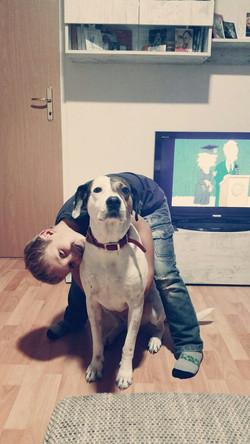 Hopeland-asociacion-perros-felices