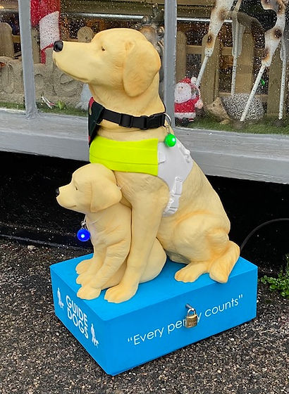 Guide Dogs Collection Dog.jpg