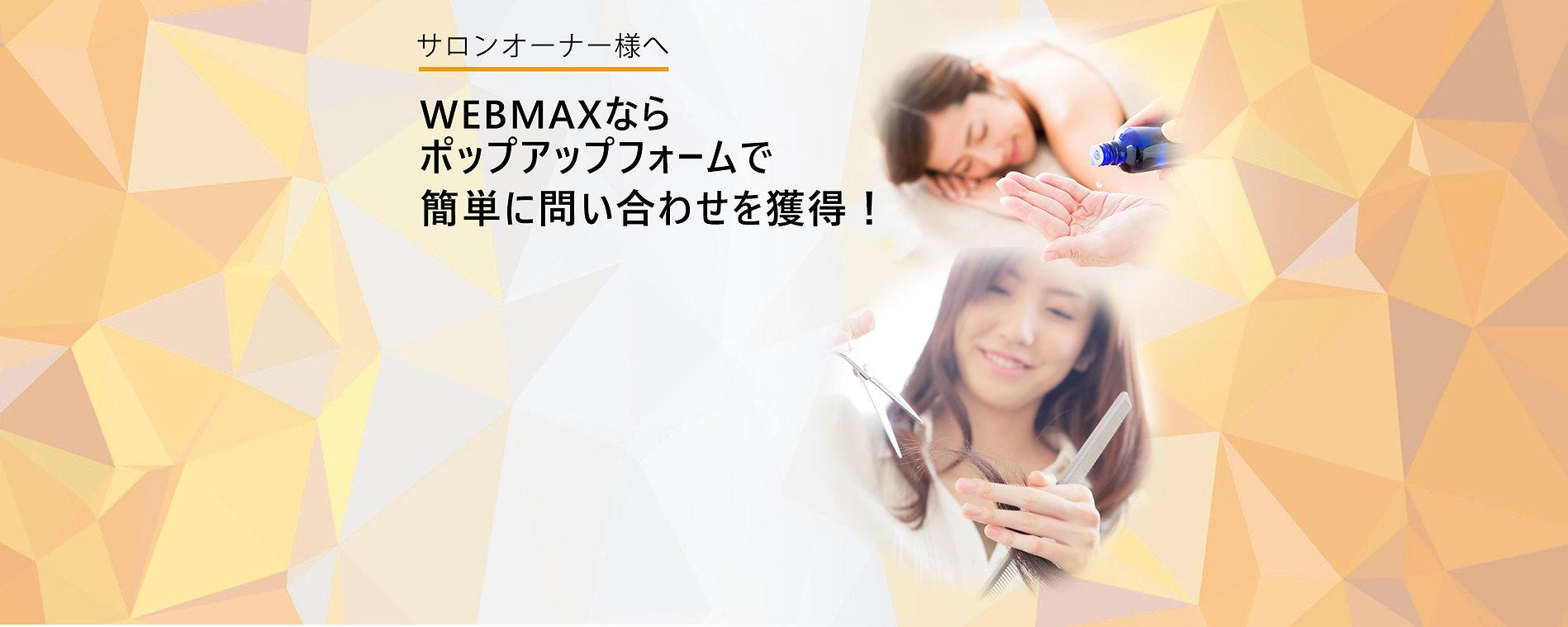 サロンウェブマックスMV.jpg