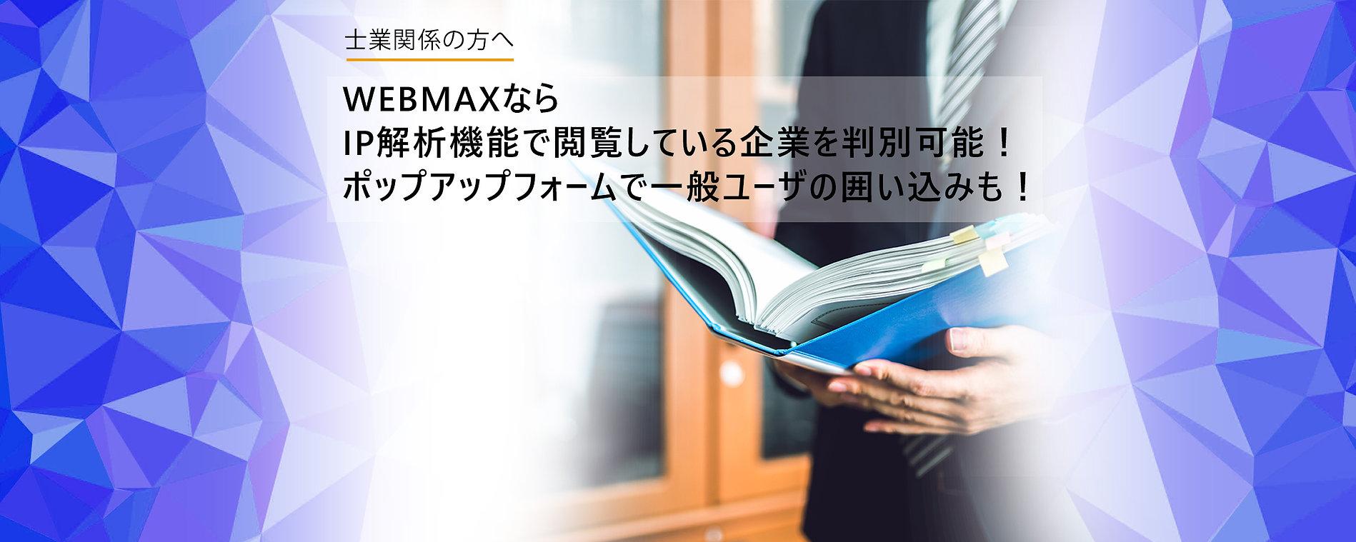 仕業ウェブマックスMV.jpg