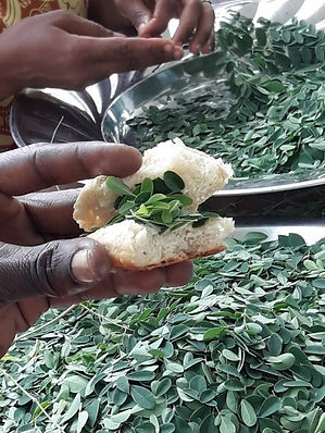 moringa sandwich.jpg