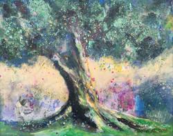 J50- Olive Tree on my Mind