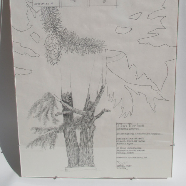 Doug Firs: Painting to Save the Trees