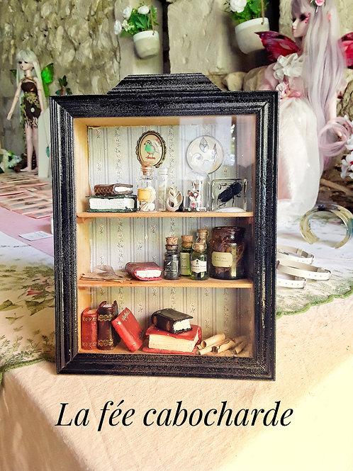 Vitrine Cabinet de curiosités miniature