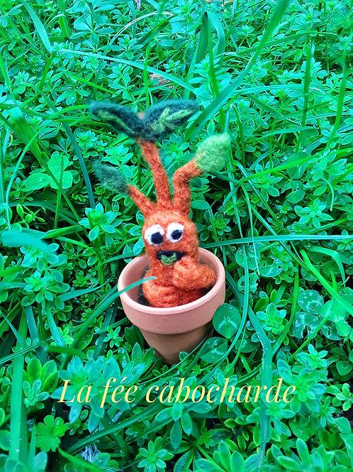 Petite mandragore dans son pot