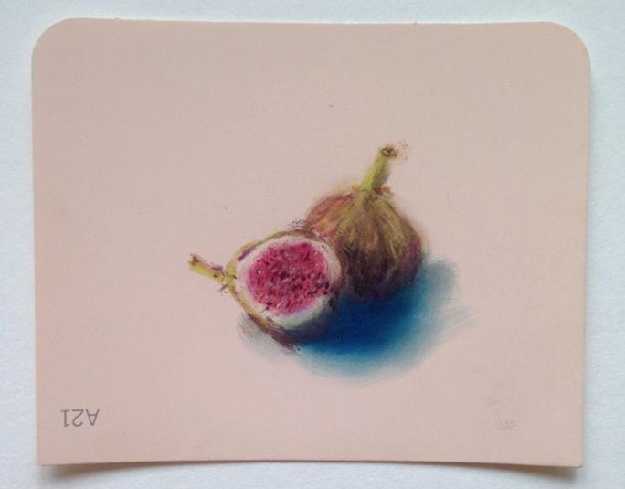 Fig Pastel on Martha Stewart Paint chips Framed