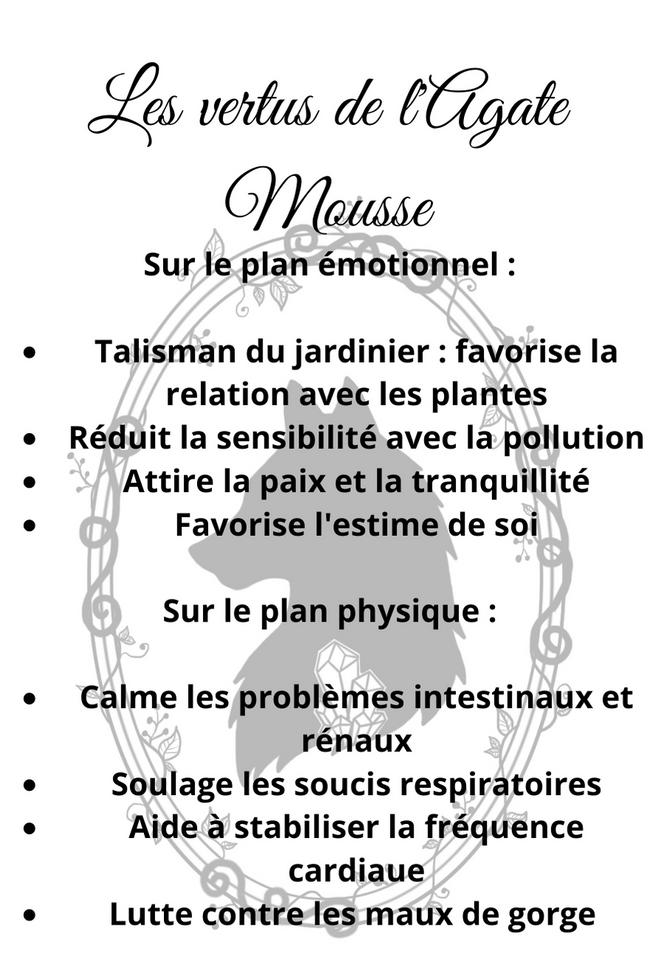 Les vertus de l'Agate Mousse.png