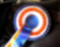 equine award.jpg