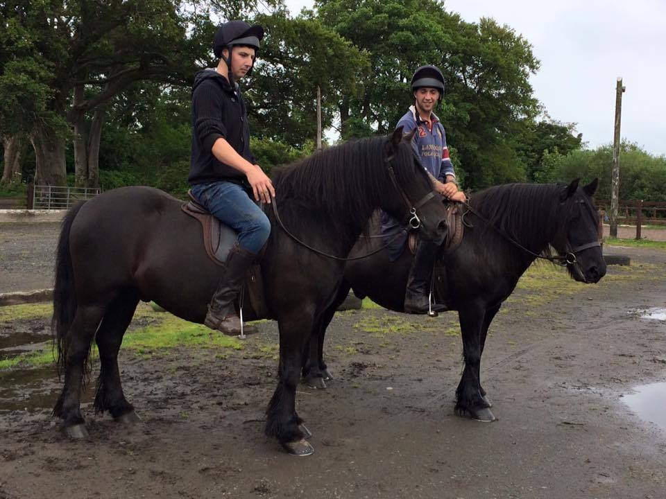 Fell Ponies in Native Pony Saddles