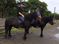 Fell Ponies in Native Pony Saddles