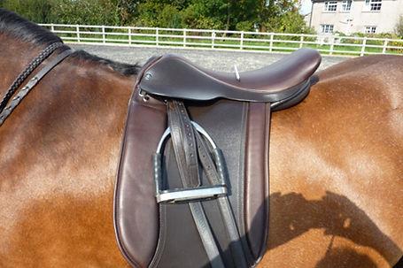 Checking the balance of a saddle