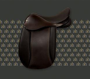 ah-saddles-pony-symphony-2019.jpg