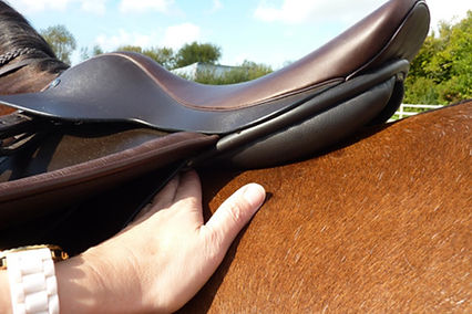 check for bridging, the gap between the horses back and the entre of th saddle