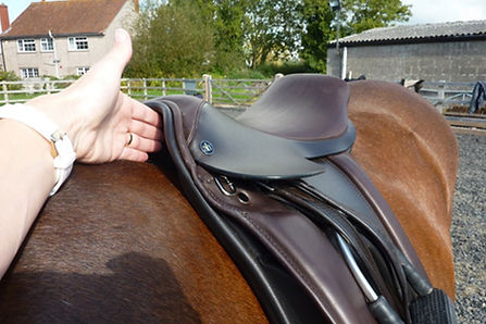 checking the wither clearance on a saddle
