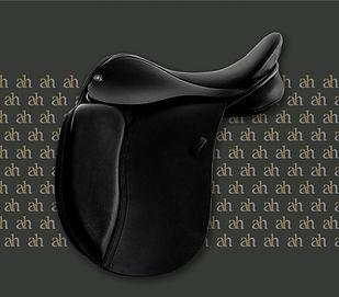 ah-saddles-pony-dressage-2019.jpg