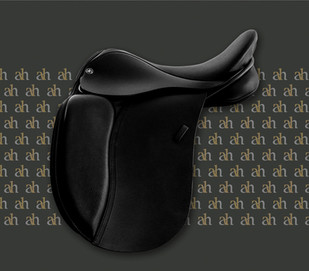 ah-saddles-pony-dressage-2019.jpg