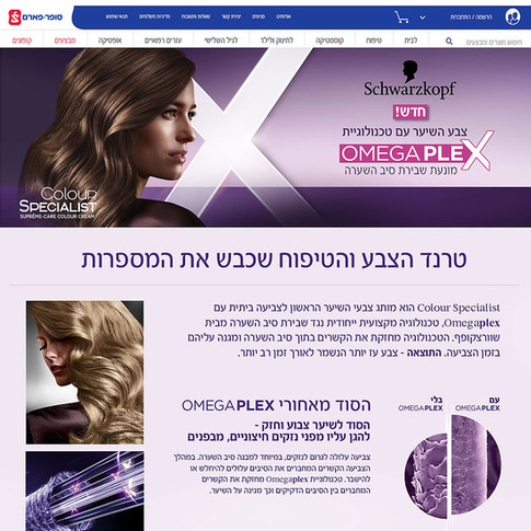 Schwarzkopf Campaign Minisite