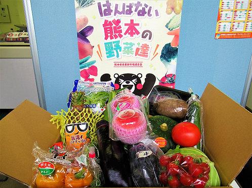 熊本県産はんぱない野菜達(税込み)
