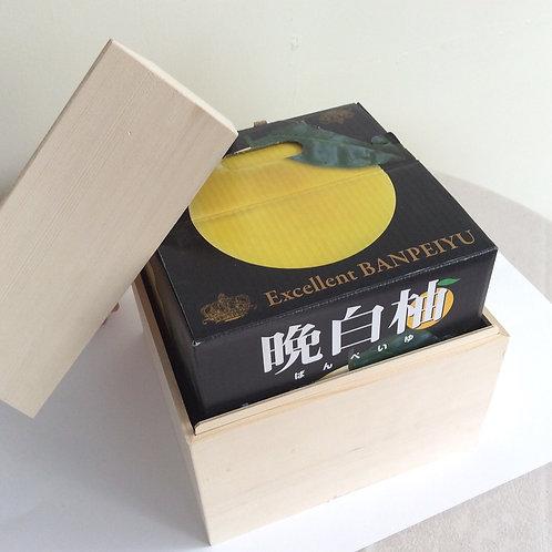 熊本県八代特産晩白柚(高級桐箱入り)