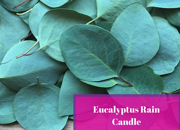 Eucalyptus Rain Candle
