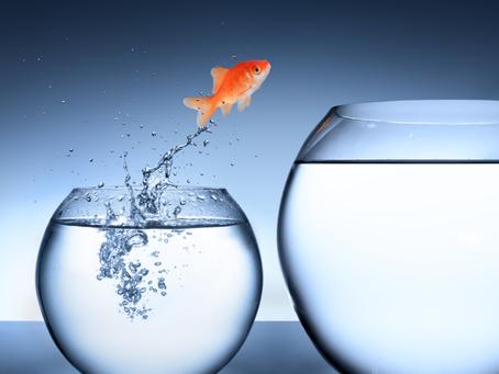Crushing Fear of Change