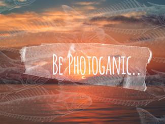 Be Photoganic!
