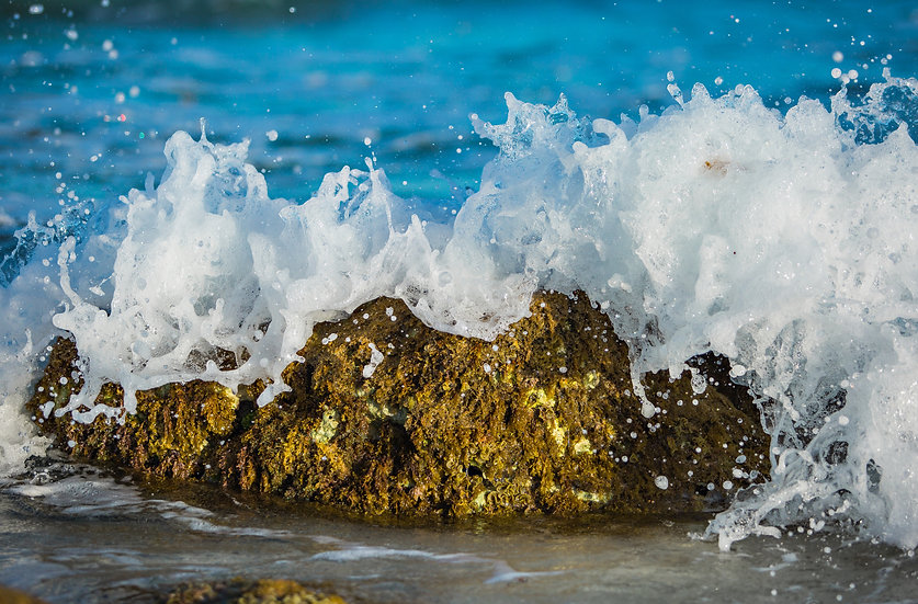 Shore Break 16