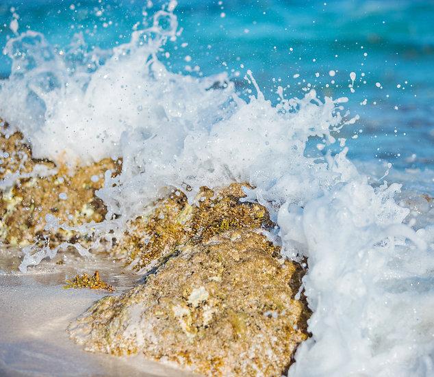 Shore Break 7