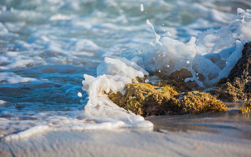 Shore Break 5