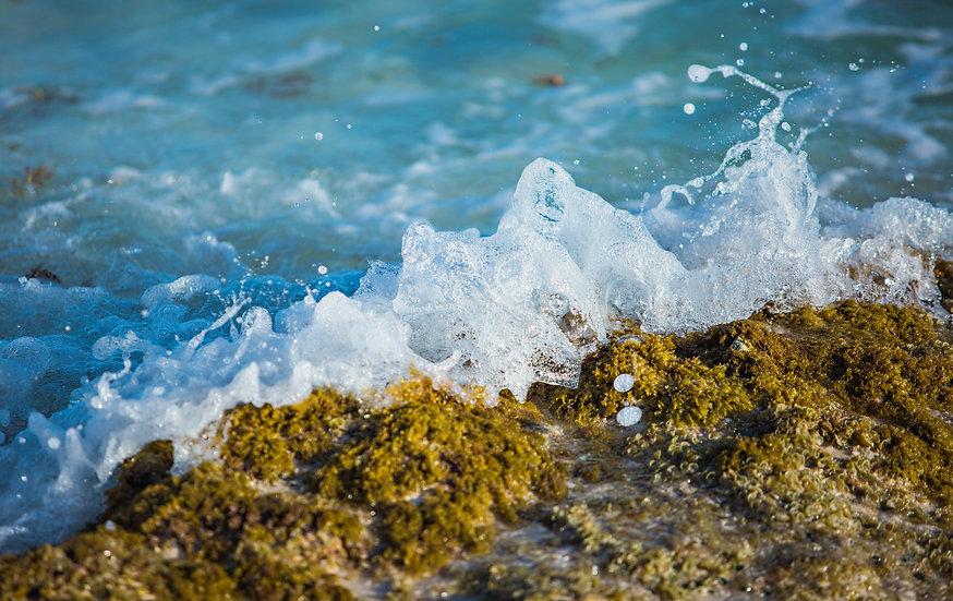 Shore Break 8