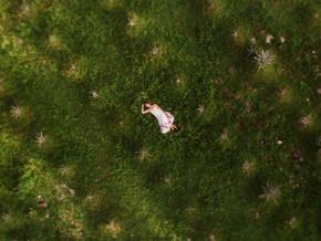 Agave Fields in Cozumel