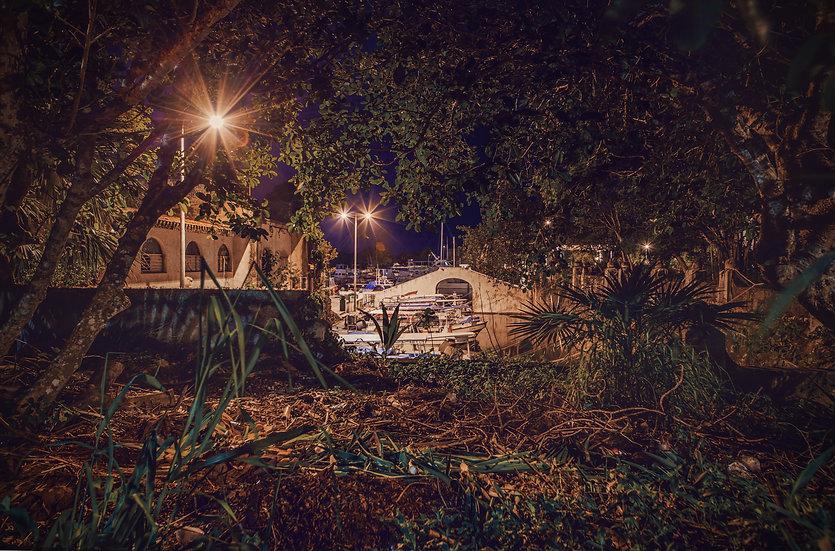 Marine at Night
