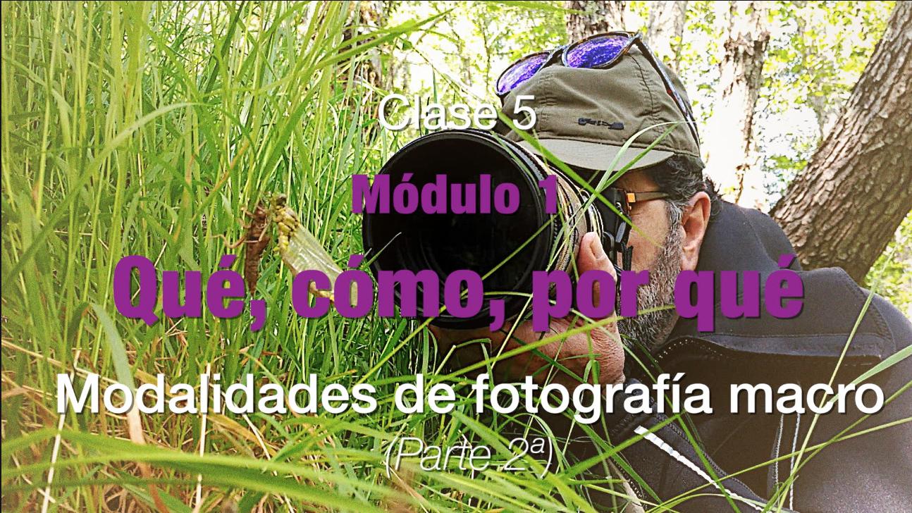 Clase 5 Modalidades fotografia macro 2