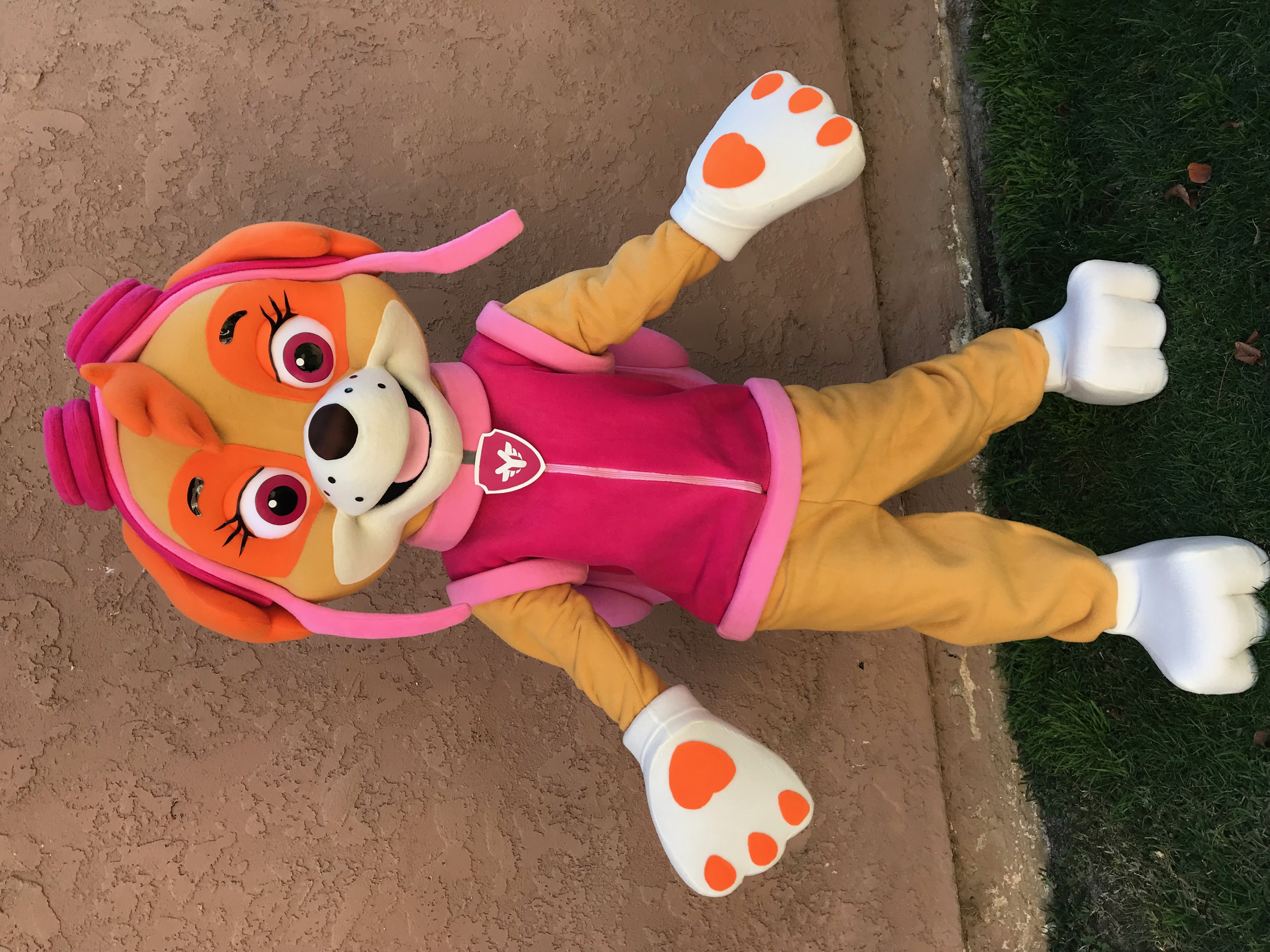 Skye Paw Patrol character for hire