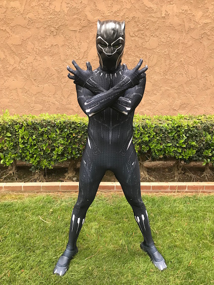 Black Panther Theme Party