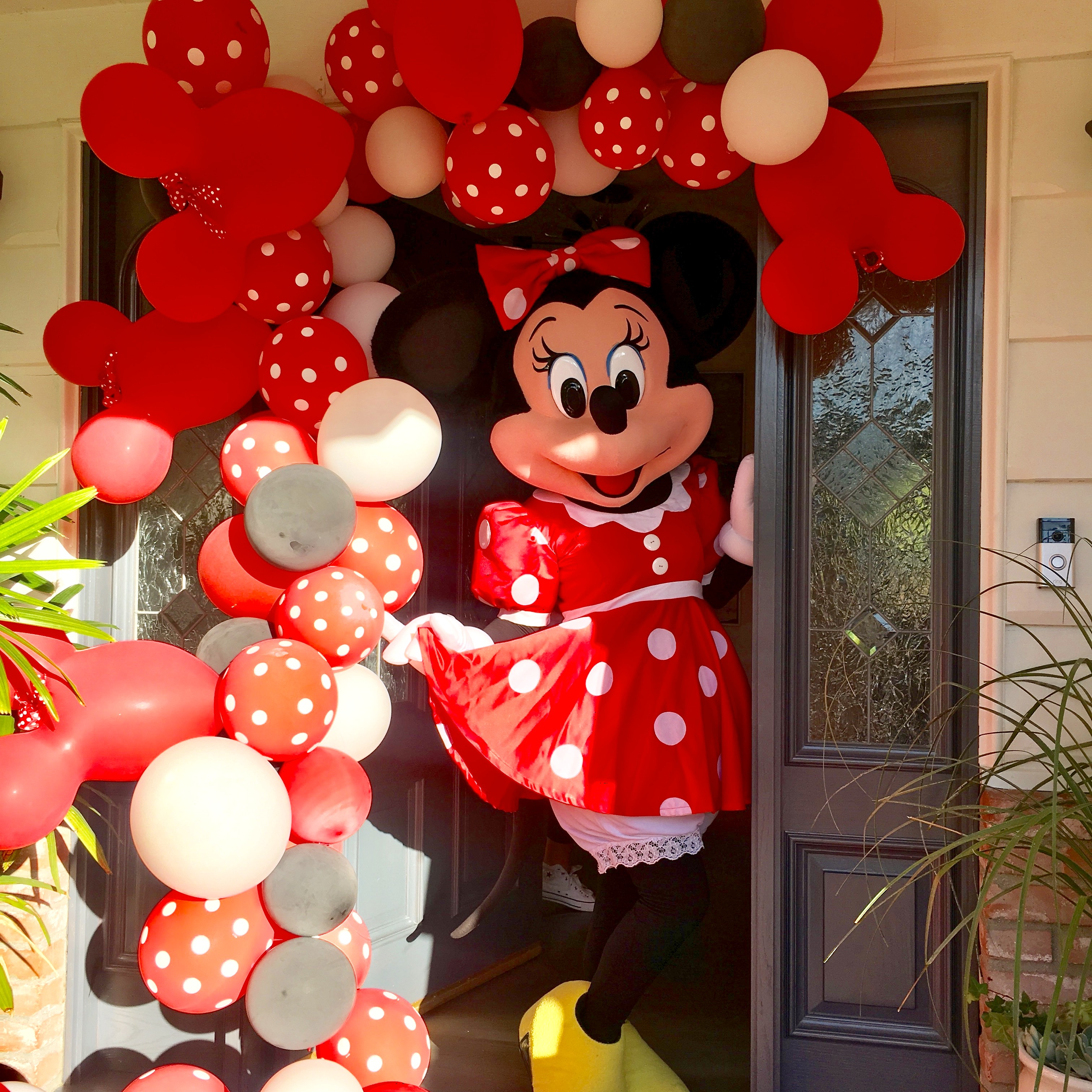 Minnie Mouse Mascot for Hire