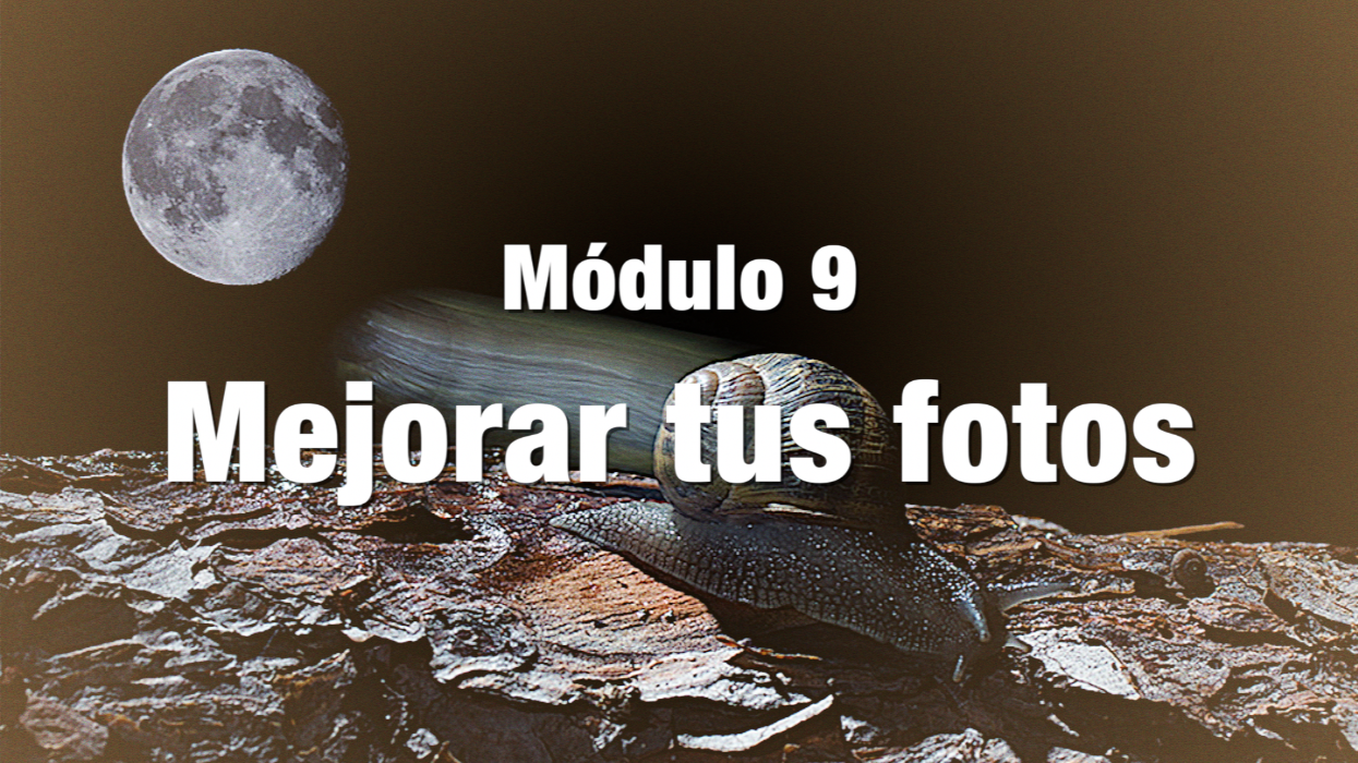MODULO 9 BLANCO