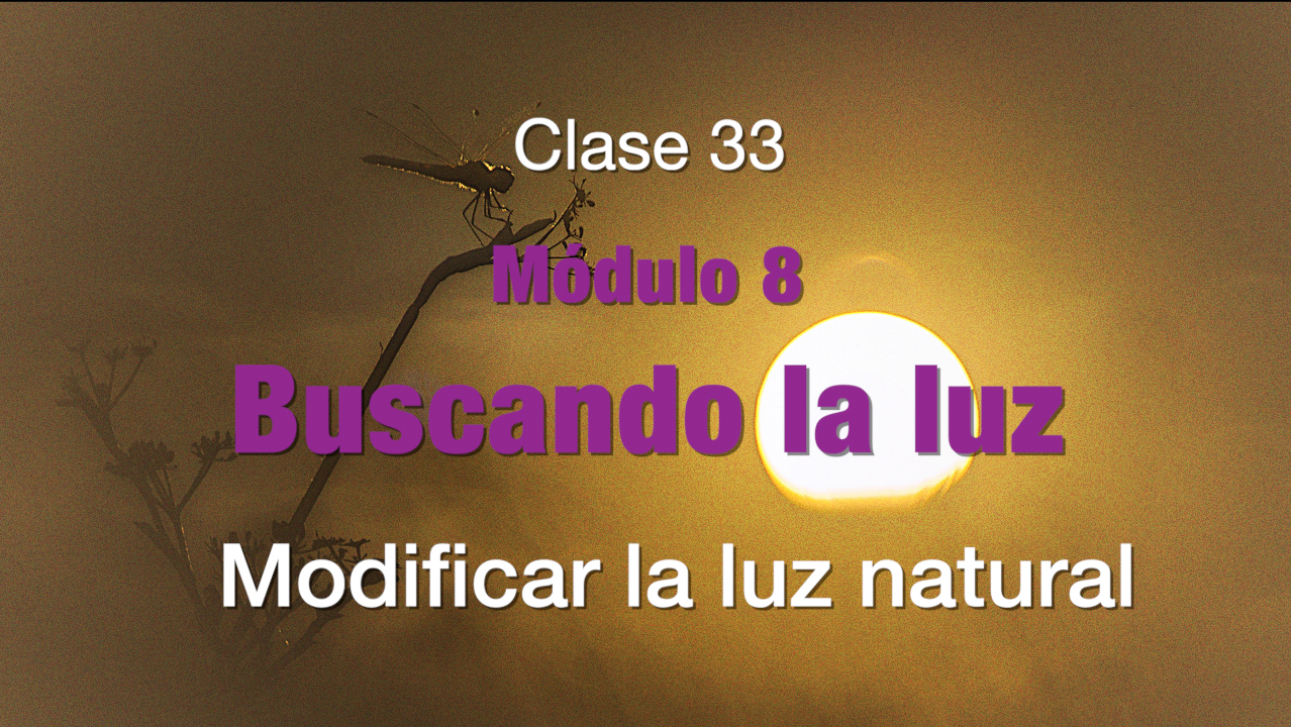 Clase 33.  Modificar la luz natural