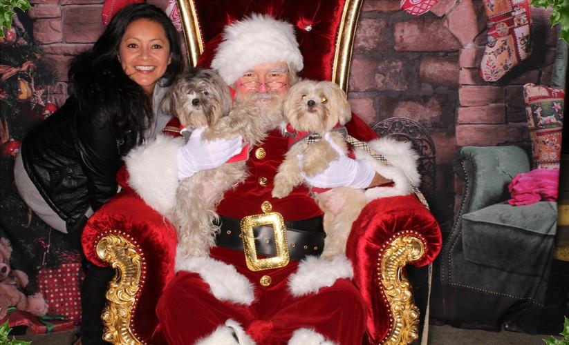 Pet_photos_with_santa_claus_Los_angeles_