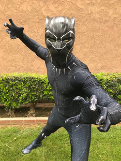 Black Panther Birthday Party
