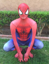 Spiderman_birthday_party_character