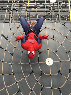 Spiderman Climbing Party