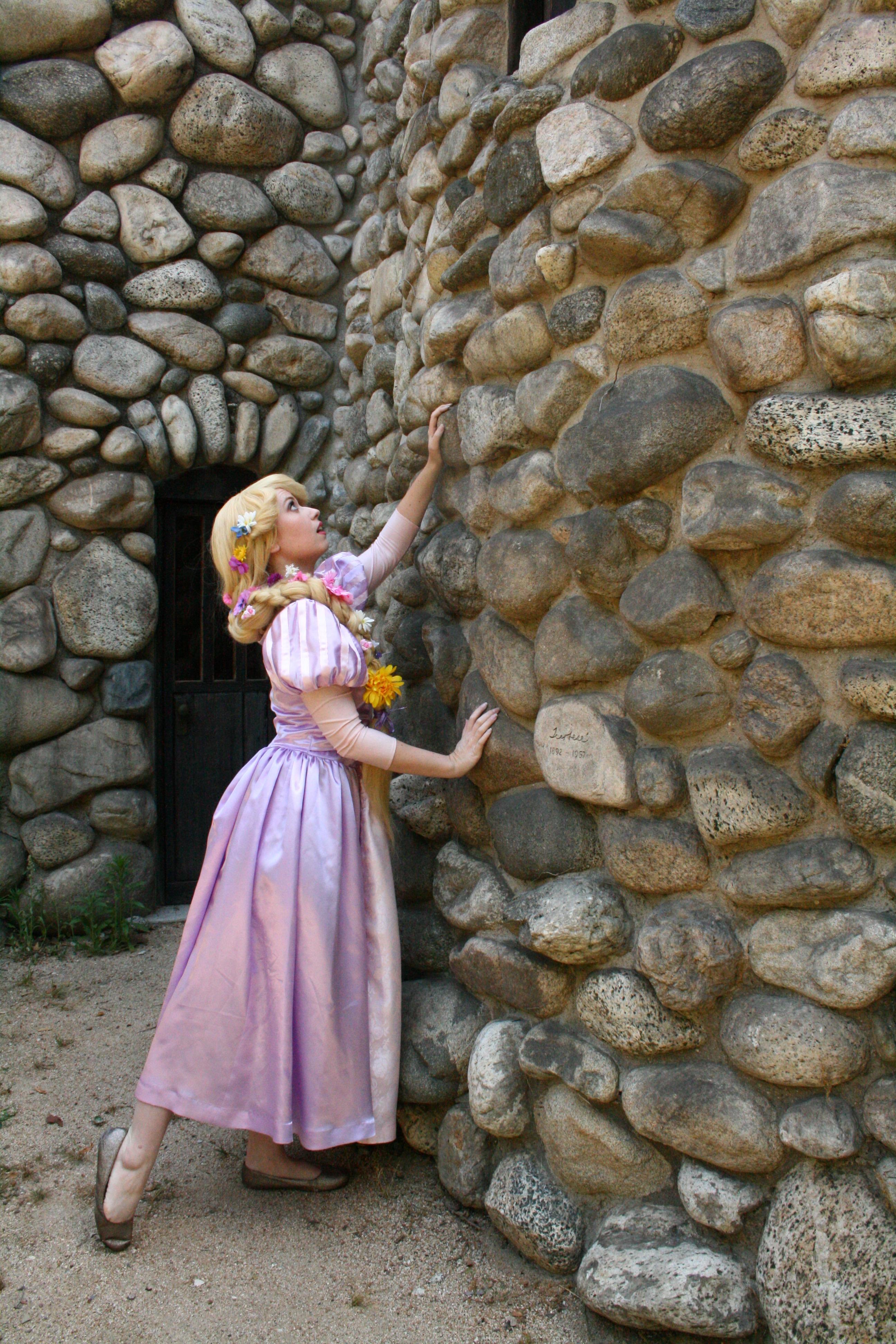 Rapunzel and her Tower